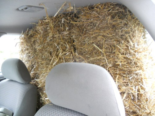 Three Bales of Straw